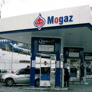 mogaz8